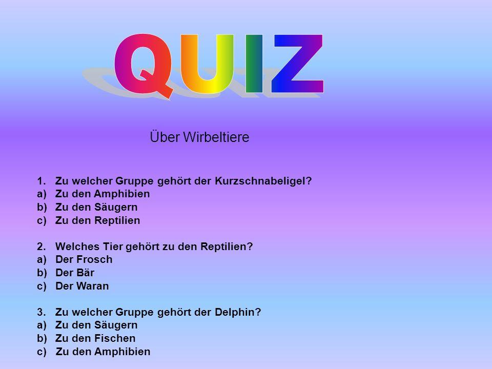 QUIZ Über Wirbeltiere. 1. Zu welcher Gruppe gehört der Kurzschnabeligel Zu den Amphibien. Zu den Säugern.