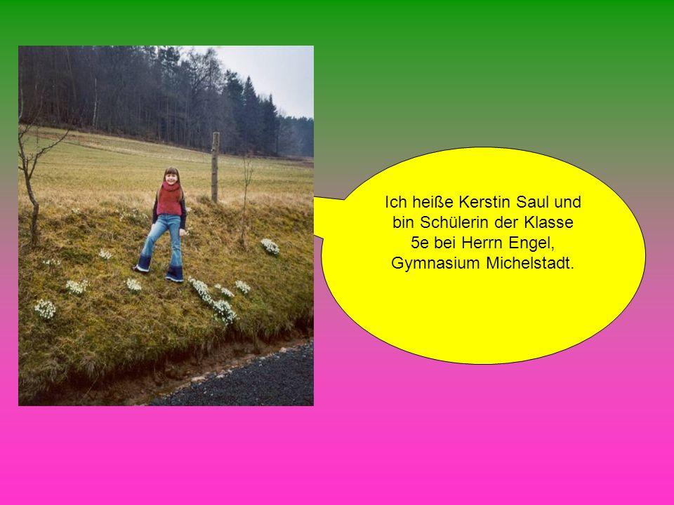 Ich heiße Kerstin Saul und bin Schülerin der Klasse 5e bei Herrn Engel, Gymnasium Michelstadt.