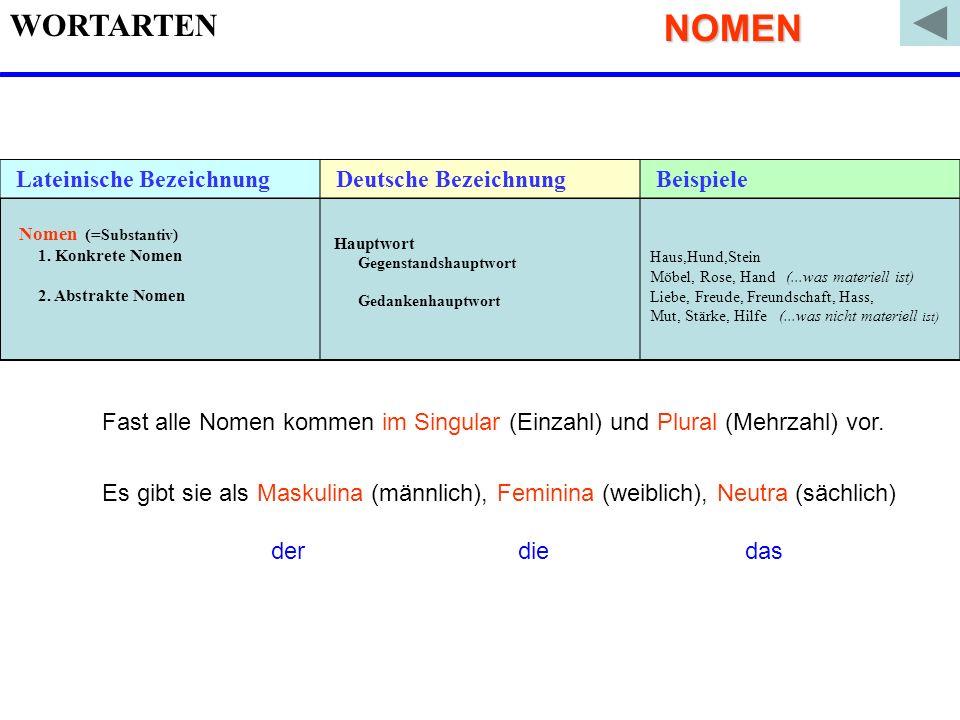 NOMEN WORTARTEN Lateinische Bezeichnung Deutsche Bezeichnung Beispiele