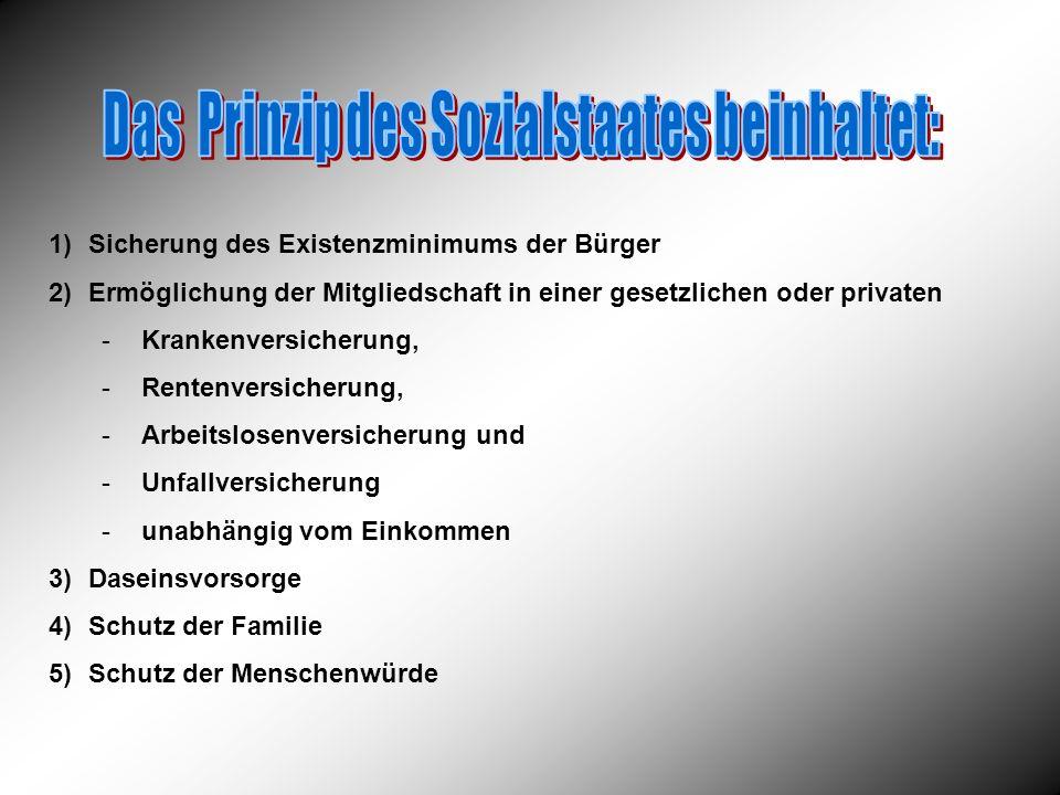 Das Prinzip des Sozialstaates beinhaltet: