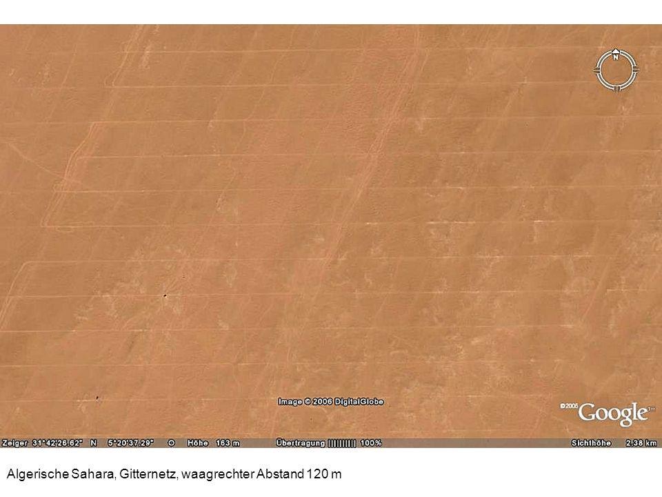 Algerische Sahara, Gitternetz, waagrechter Abstand 120 m