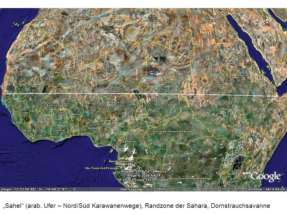 """Sahel (arab. Ufer – Nord/Süd Karawanenwege), Randzone der Sahara, Dornstrauchsavanne"