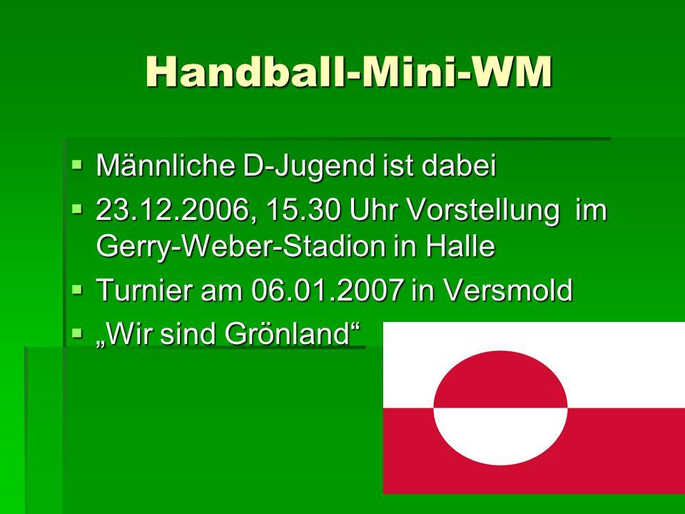 Handball-Mini-WM Männliche D-Jugend ist dabei