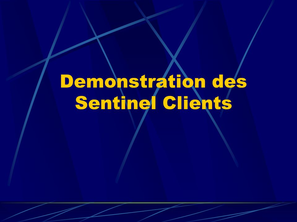 Demonstration des Sentinel Clients
