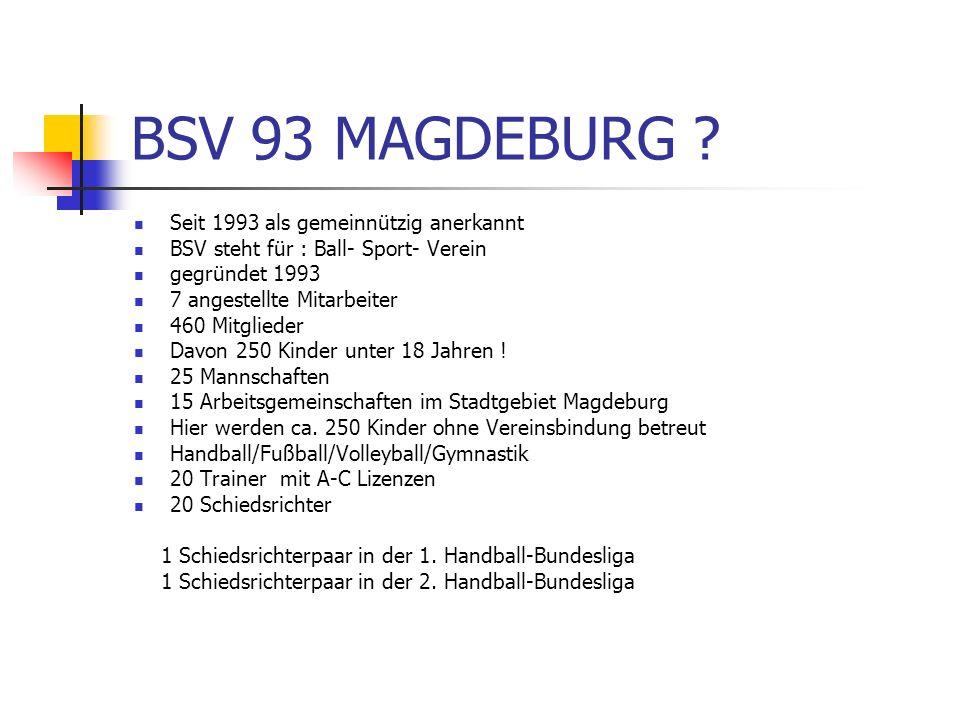 BSV 93 MAGDEBURG Seit 1993 als gemeinnützig anerkannt