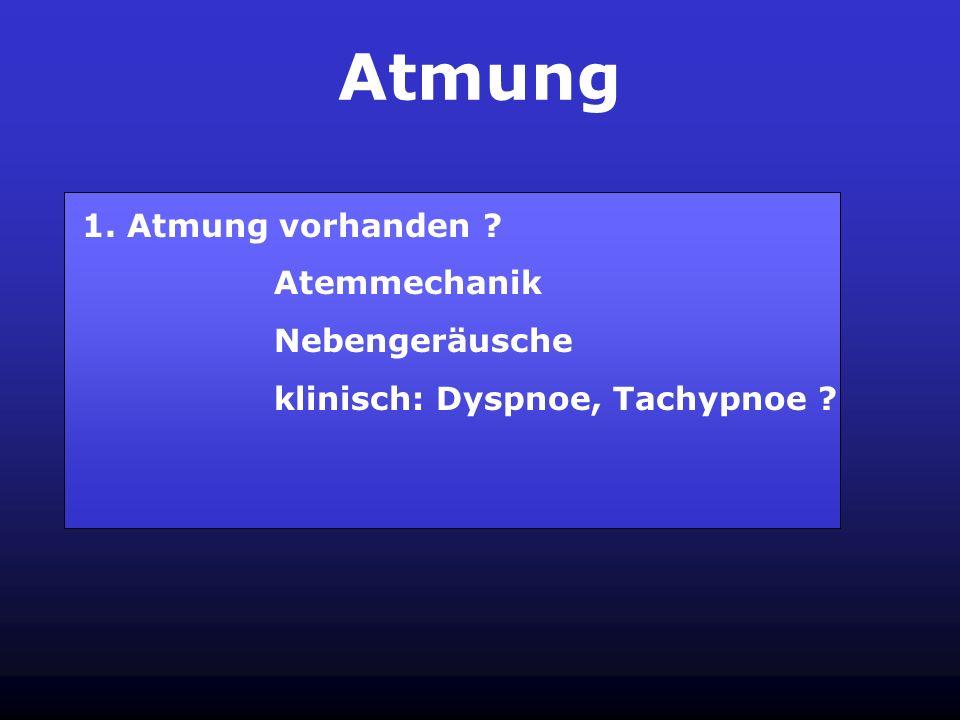 Atmung 1. Atmung vorhanden Atemmechanik Nebengeräusche