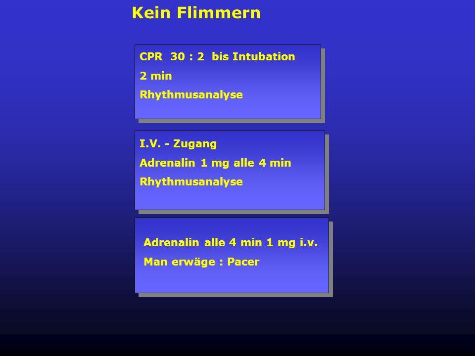 Kein Flimmern CPR 30 : 2 bis Intubation 2 min Rhythmusanalyse