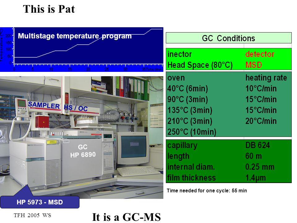 This is Pat It is a GC-MS Multistage temperature program