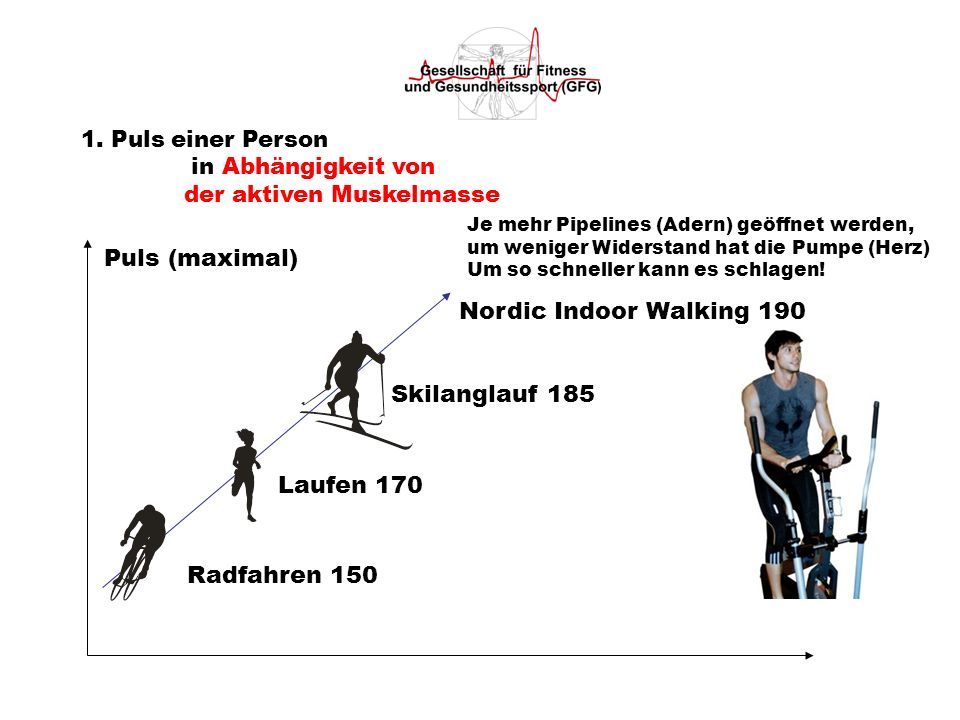 Puls (maximal) Nordic Indoor Walking 190 Skilanglauf 185 Laufen 170