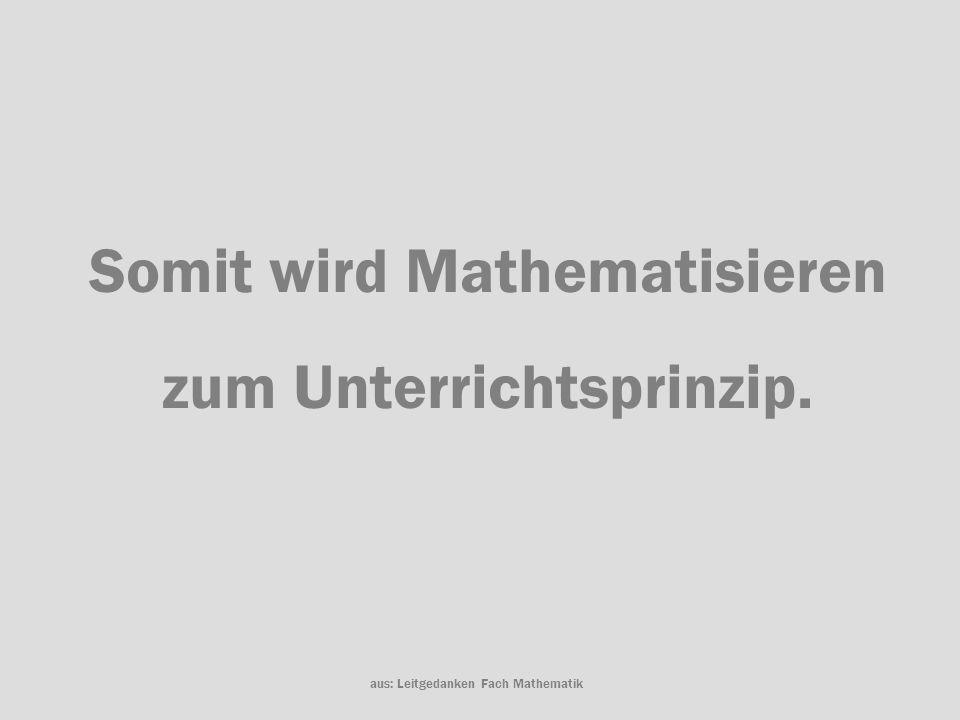 Somit wird Mathematisieren zum Unterrichtsprinzip.