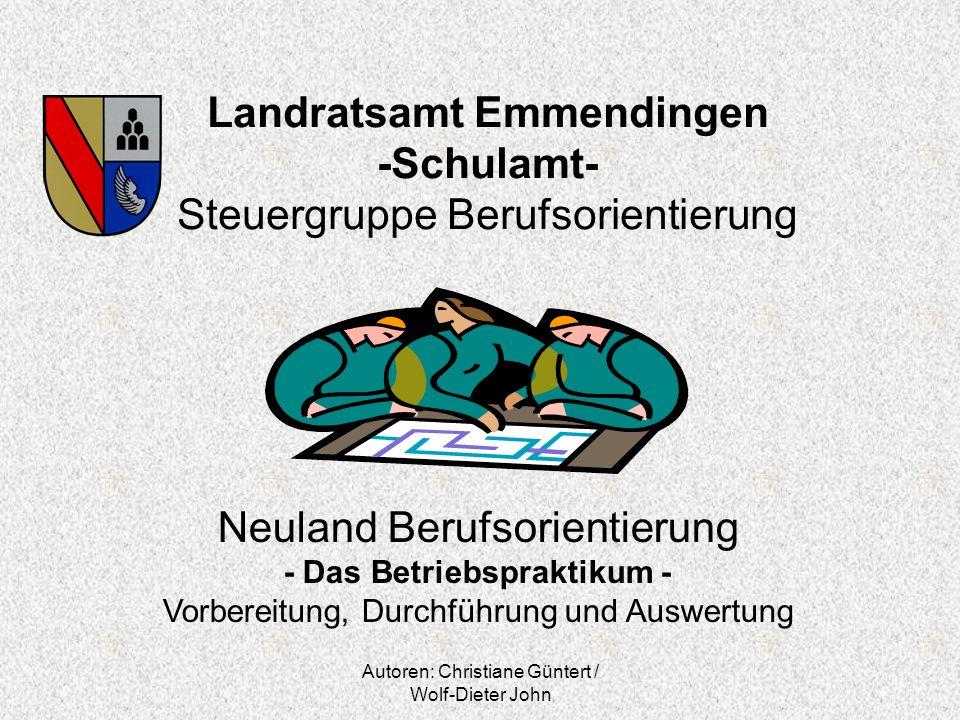 Landratsamt Emmendingen -Schulamt- Steuergruppe Berufsorientierung