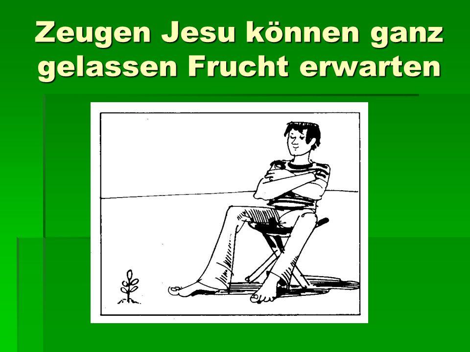 Zeugen Jesu können ganz gelassen Frucht erwarten
