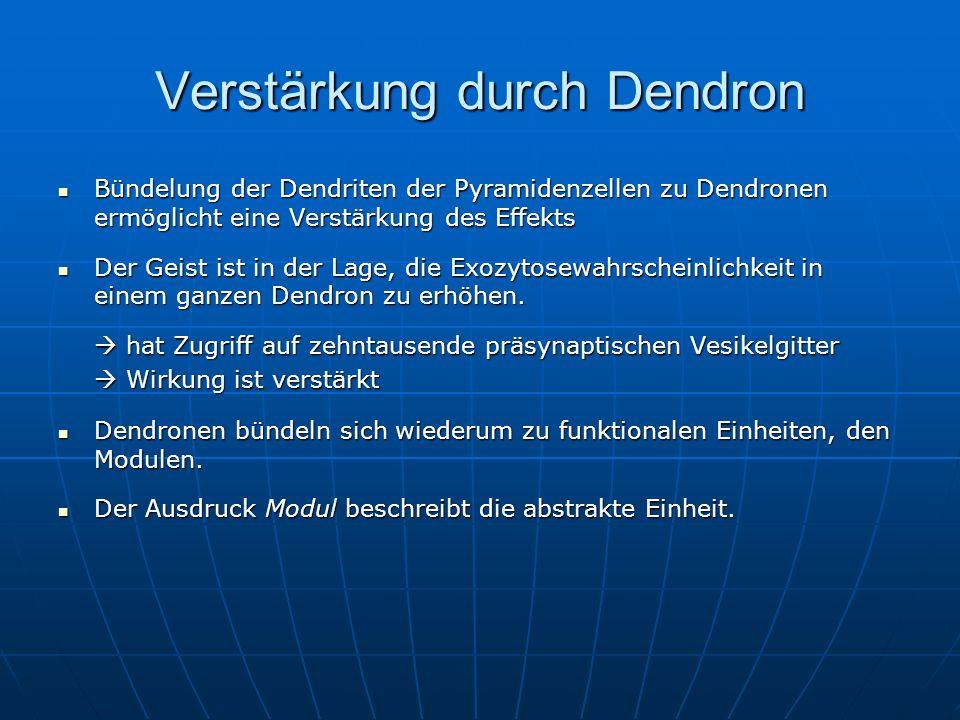 Verstärkung durch Dendron