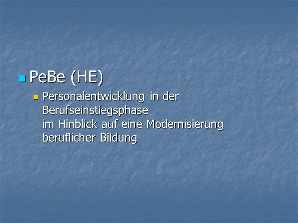 PeBe (HE) Personalentwicklung in der Berufseinstiegsphase im Hinblick auf eine Modernisierung beruflicher Bildung.