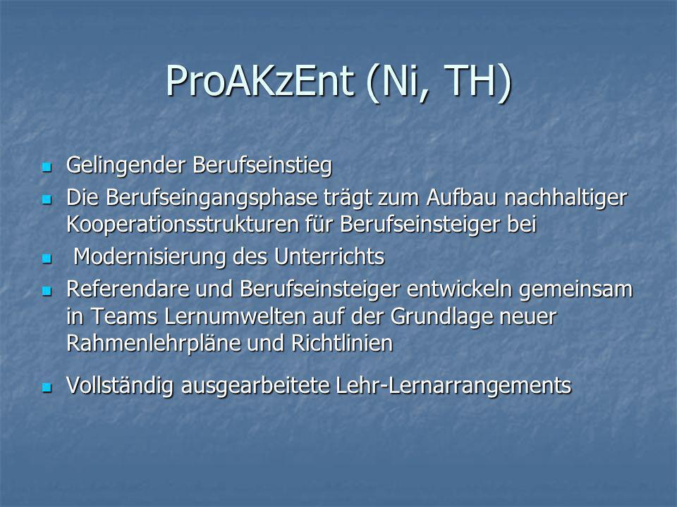ProAKzEnt (Ni, TH) Gelingender Berufseinstieg