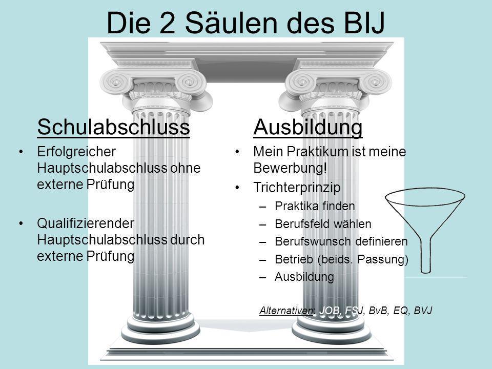 Die 2 Säulen des BIJ Schulabschluss Ausbildung