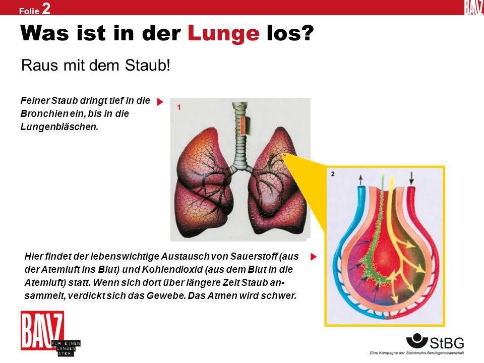 Was ist in der Lunge los Raus mit dem Staub!