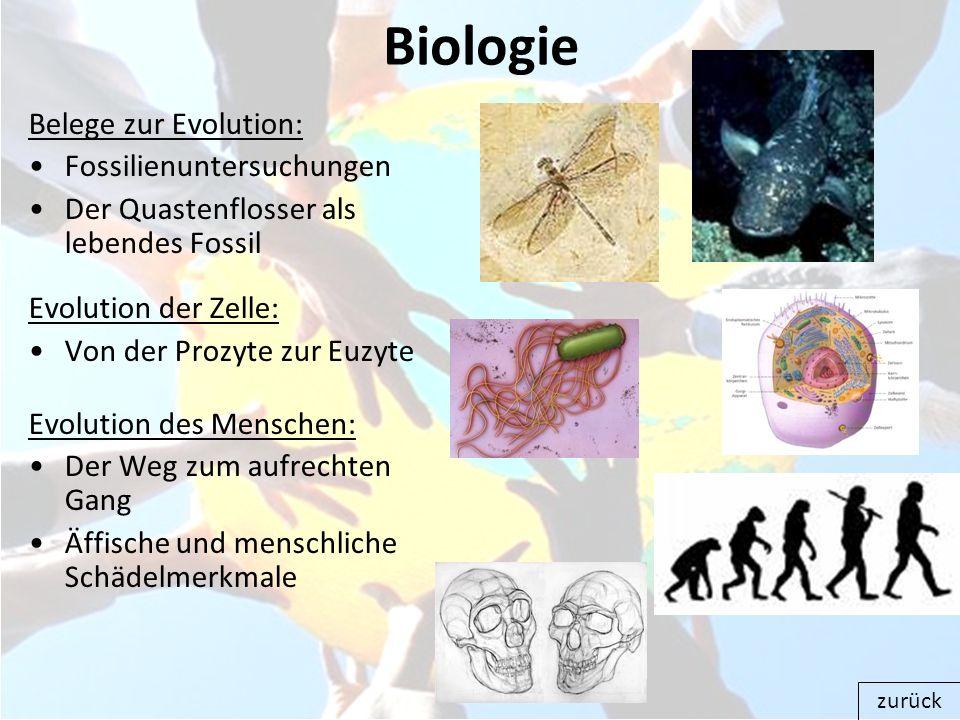 Biologie Belege zur Evolution: Fossilienuntersuchungen