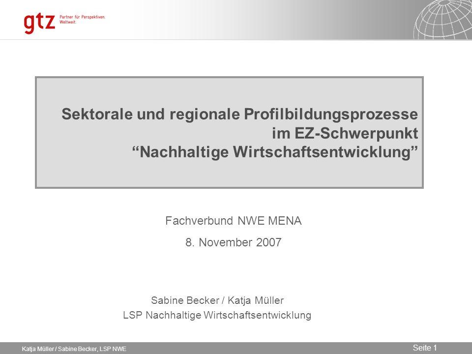 Sektorale und regionale Profilbildungsprozesse im EZ-Schwerpunkt Nachhaltige Wirtschaftsentwicklung