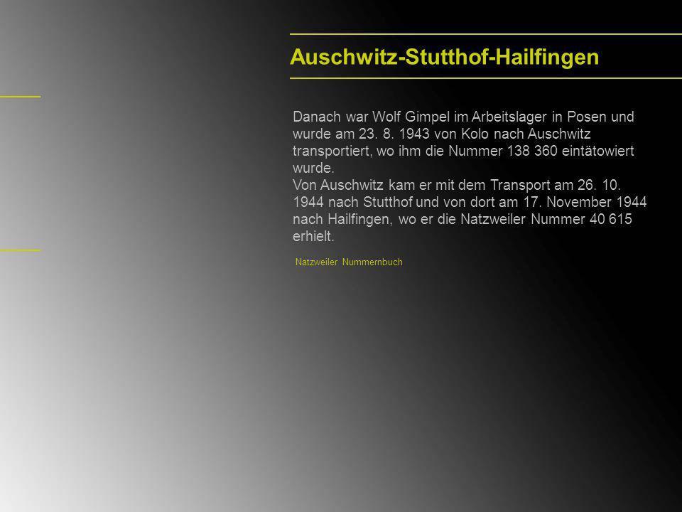 Auschwitz-Stutthof-Hailfingen