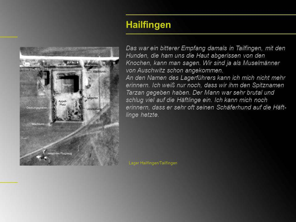 Hailfingen