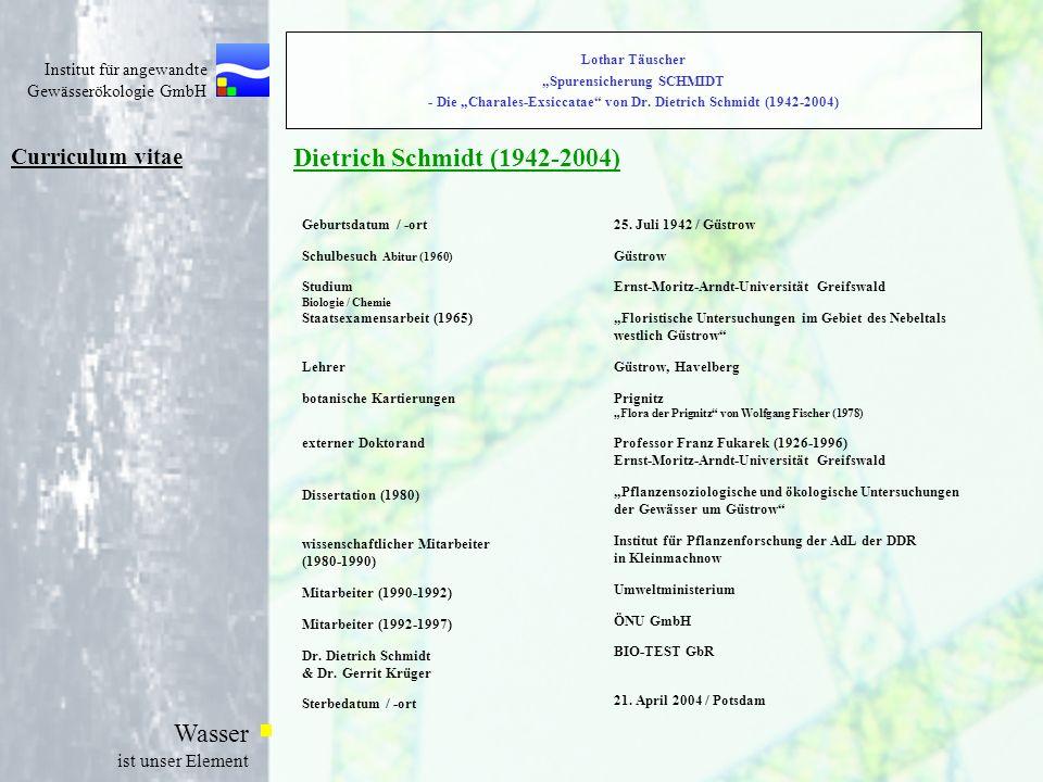 Dietrich Schmidt (1942-2004) Curriculum vitae