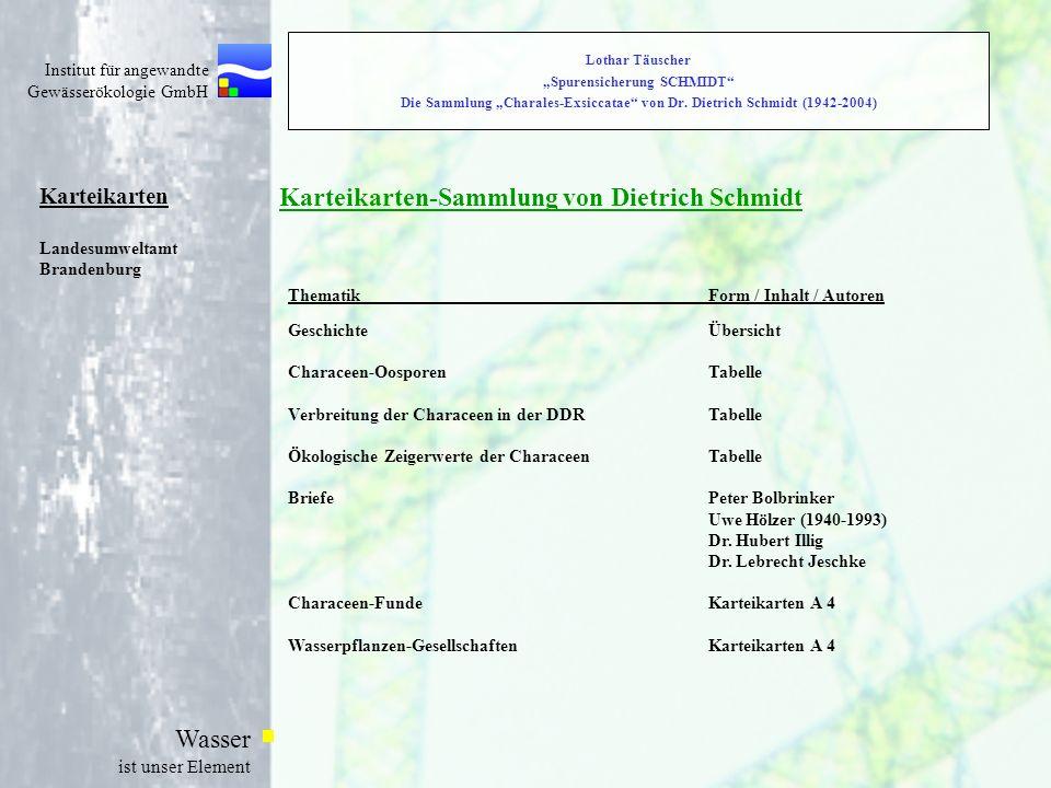 Karteikarten-Sammlung von Dietrich Schmidt