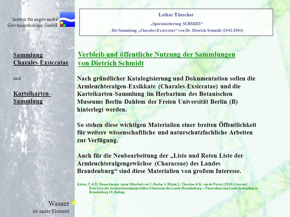 Verbleib und öffentliche Nutzung der Sammlungen von Dietrich Schmidt