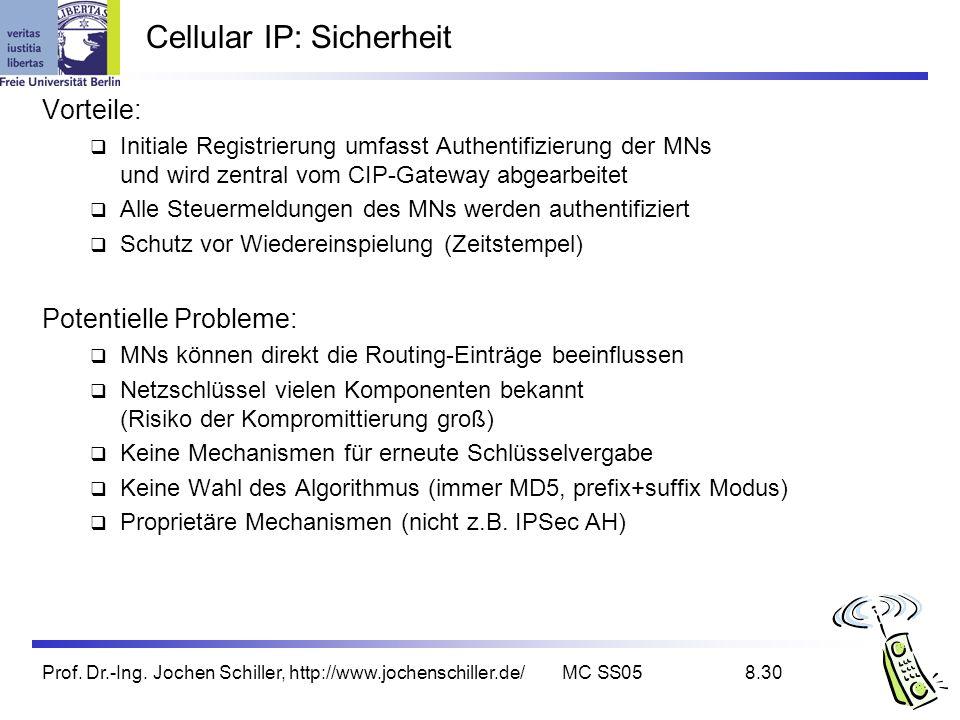 Cellular IP: Sicherheit