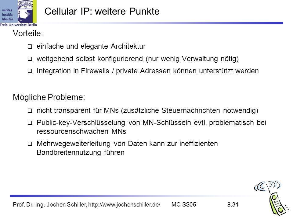 Cellular IP: weitere Punkte