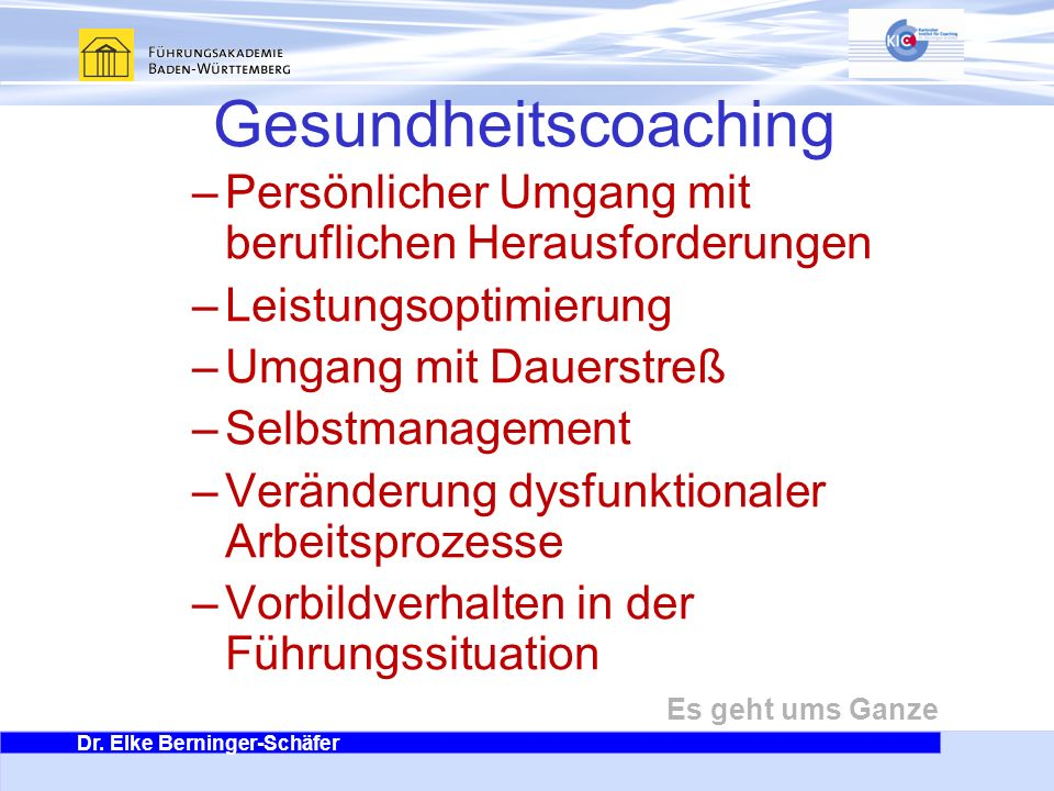Gesundheitscoaching Persönlicher Umgang mit beruflichen Herausforderungen. Leistungsoptimierung. Umgang mit Dauerstreß.