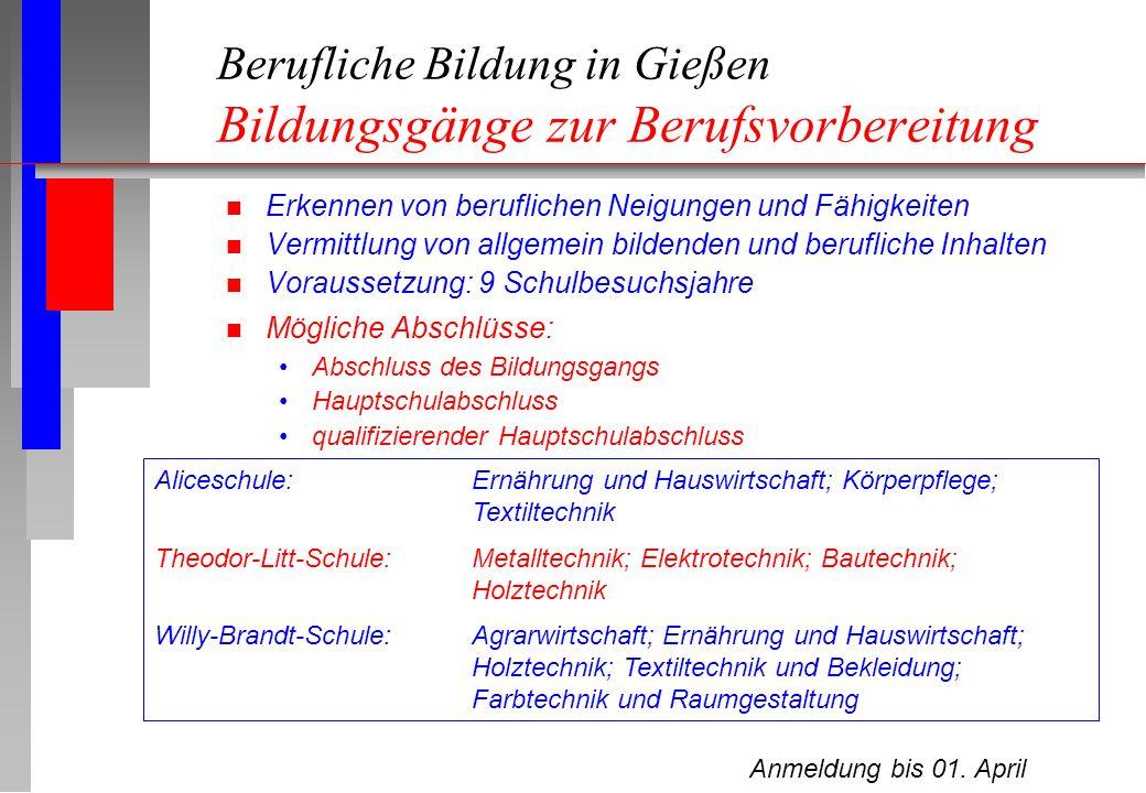 Berufliche Bildung in Gießen Bildungsgänge zur Berufsvorbereitung