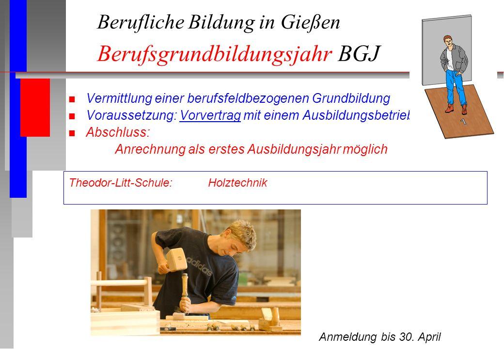 Berufliche Bildung in Gießen Berufsgrundbildungsjahr BGJ
