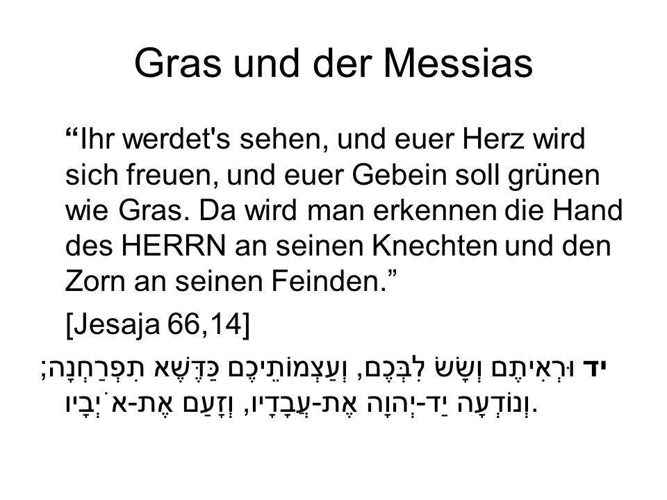 Gras und der Messias