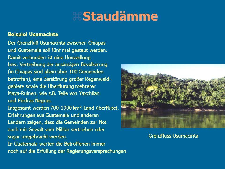 Staudämme Beispiel Usumacinta
