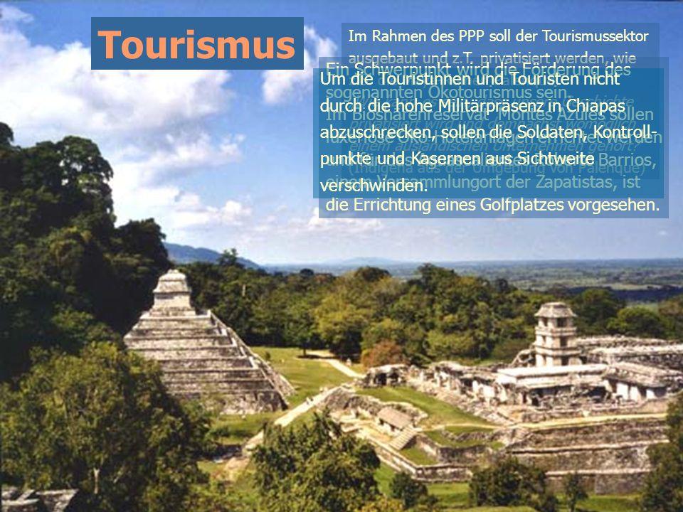Tourismus Ein Schwerpunkt wird die Förderung des