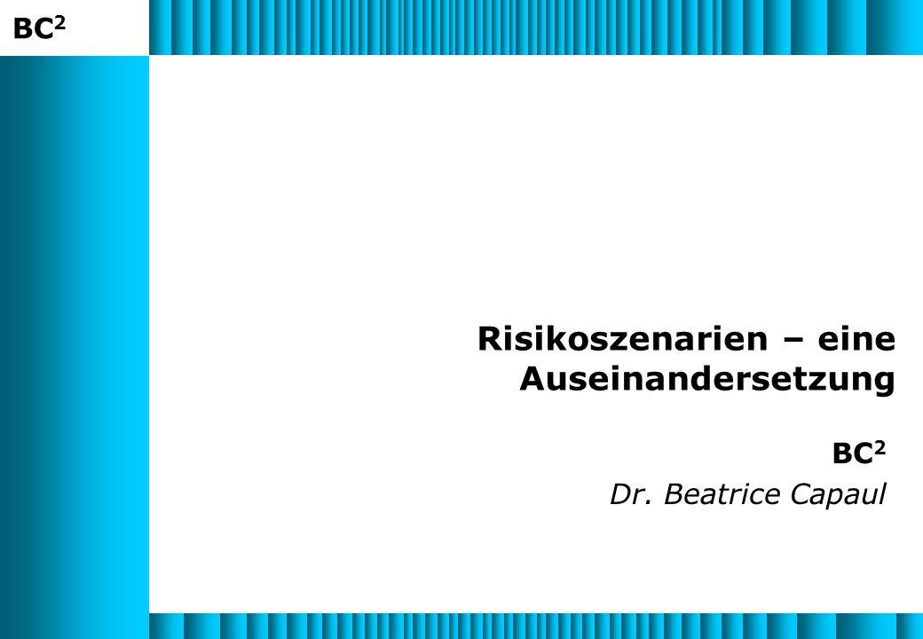 Risikoszenarien – eine Auseinandersetzung