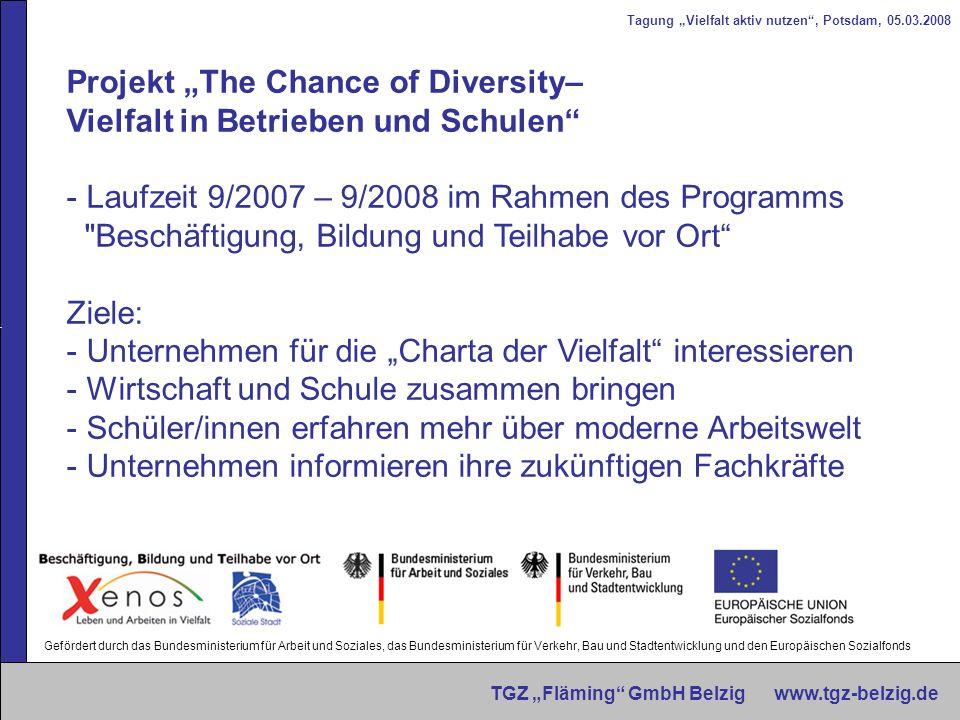 """Projekt """"The Chance of Diversity– Vielfalt in Betrieben und Schulen"""