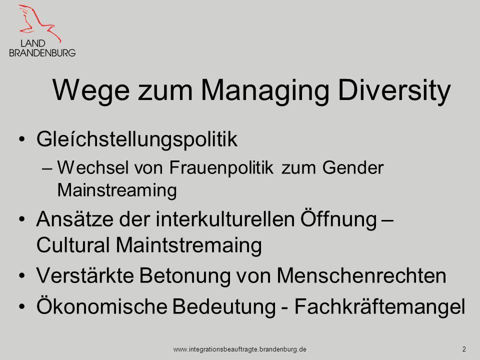 Wege zum Managing Diversity