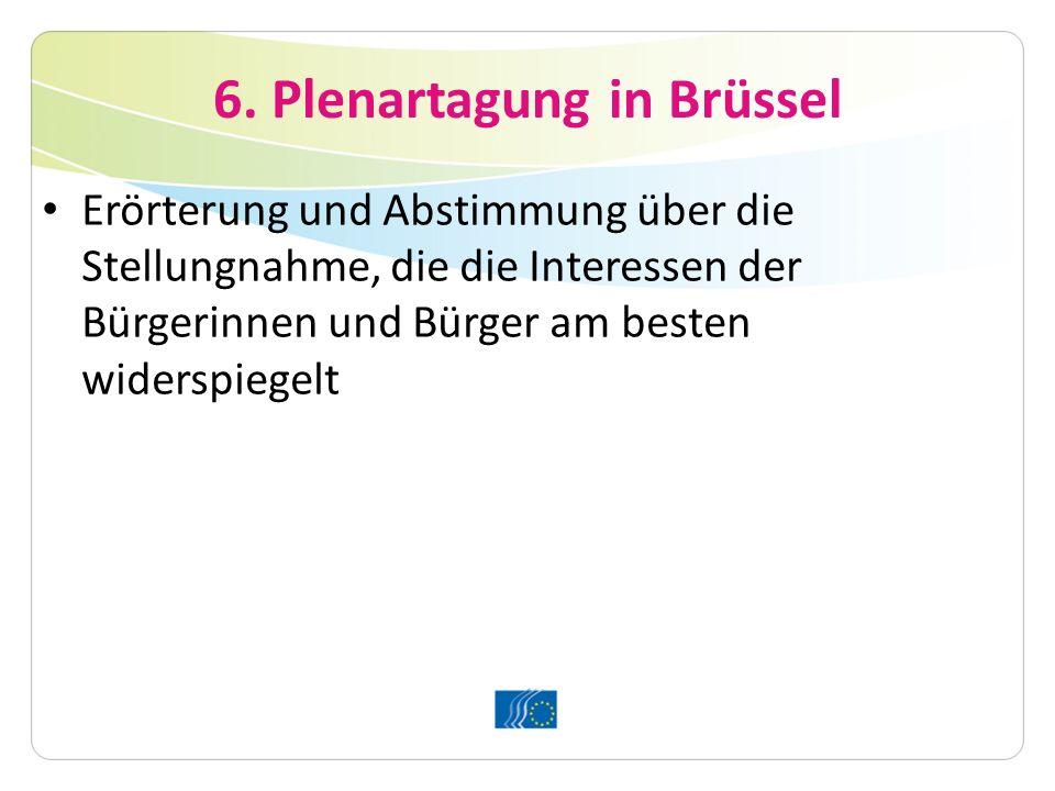 6. Plenartagung in Brüssel