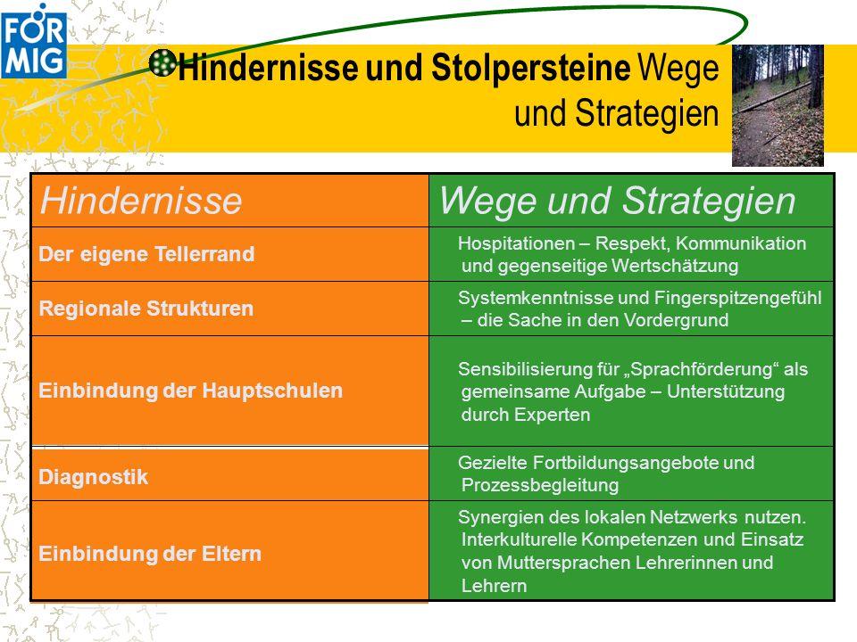 Hindernisse und Stolpersteine Wege und Strategien
