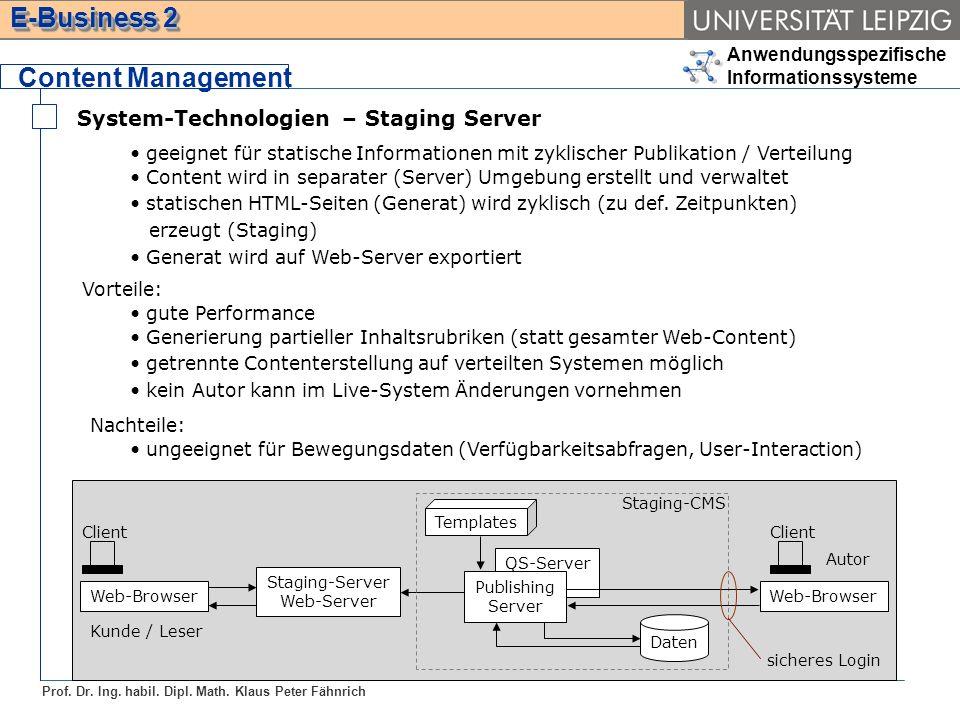 Content Management System-Technologien – Staging Server