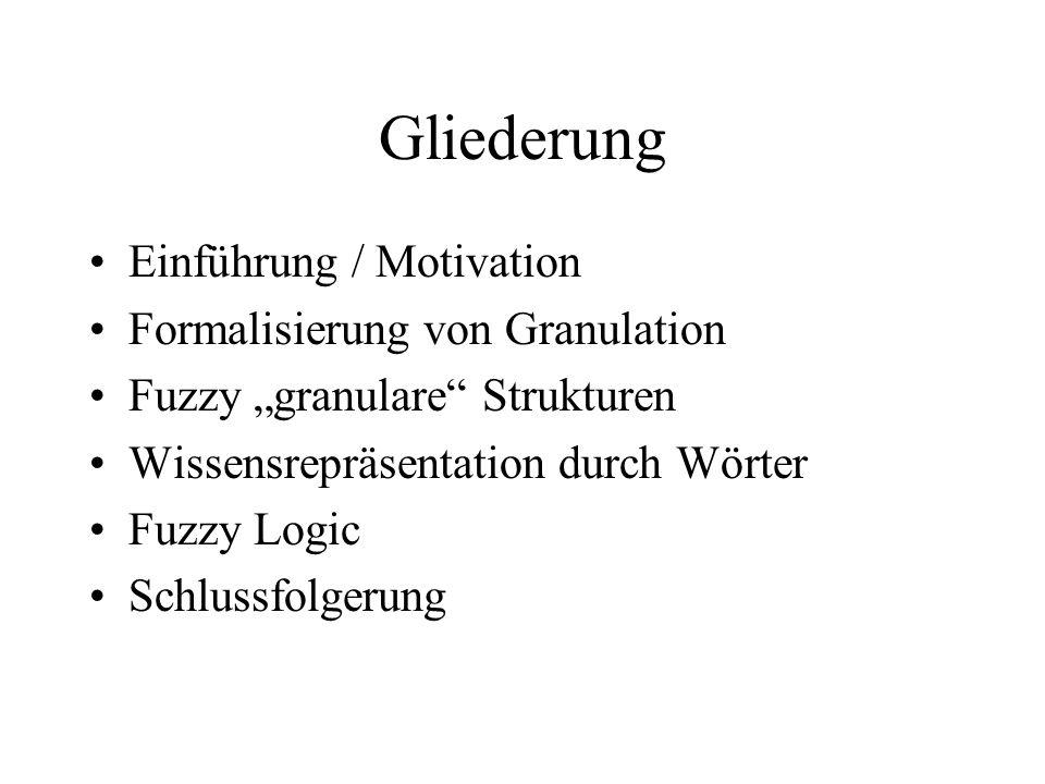 Gliederung Einführung / Motivation Formalisierung von Granulation