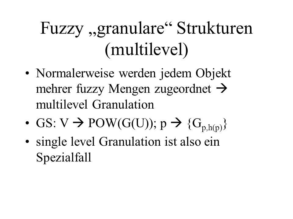 """Fuzzy """"granulare Strukturen (multilevel)"""