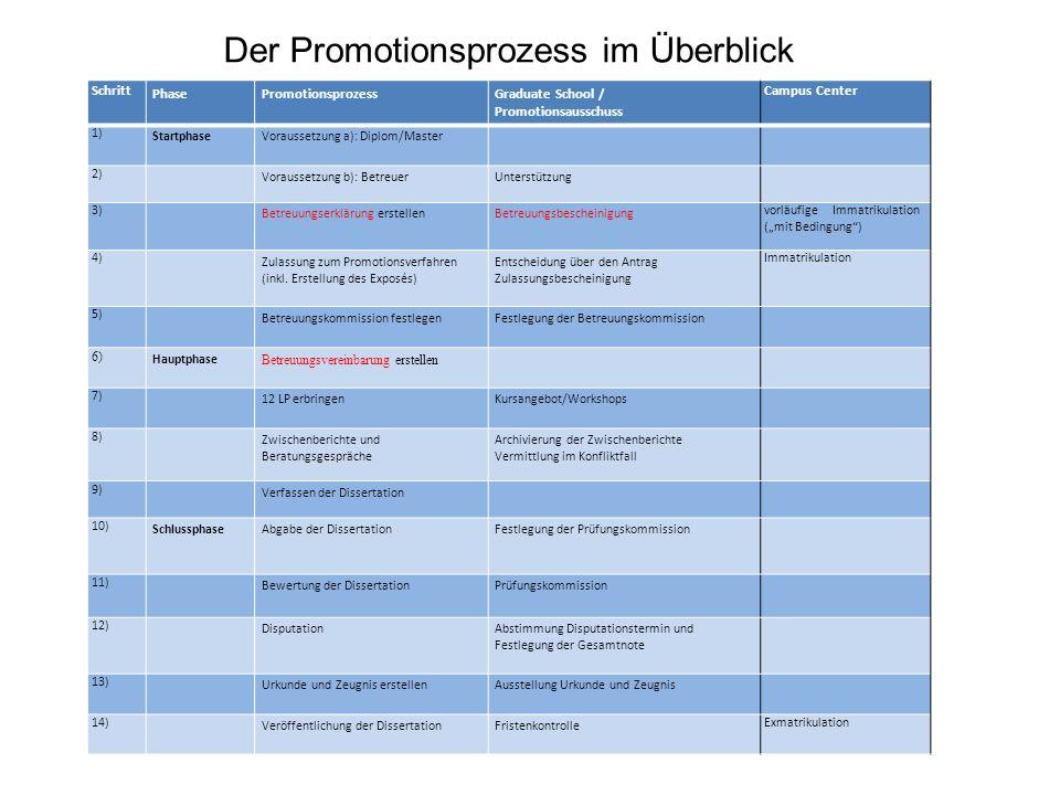 Der Promotionsprozess im Überblick