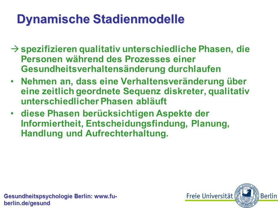 Dynamische Stadienmodelle