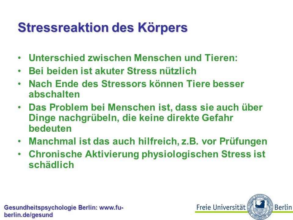 Stressreaktion des Körpers