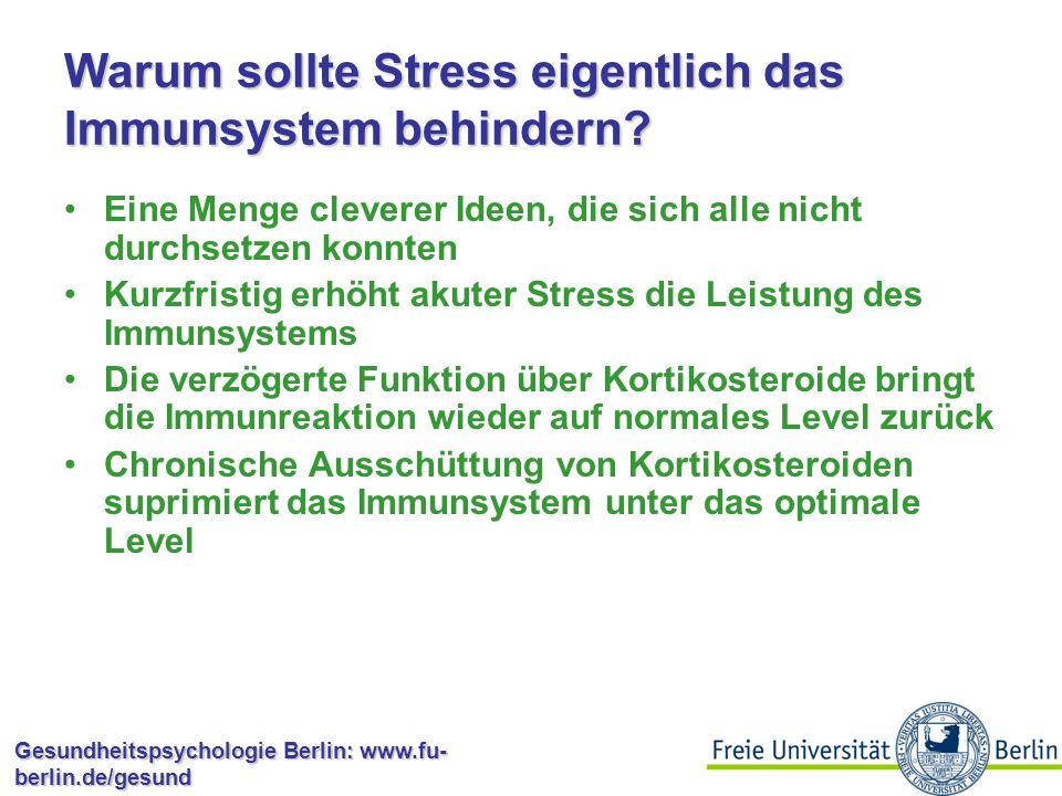 Warum sollte Stress eigentlich das Immunsystem behindern