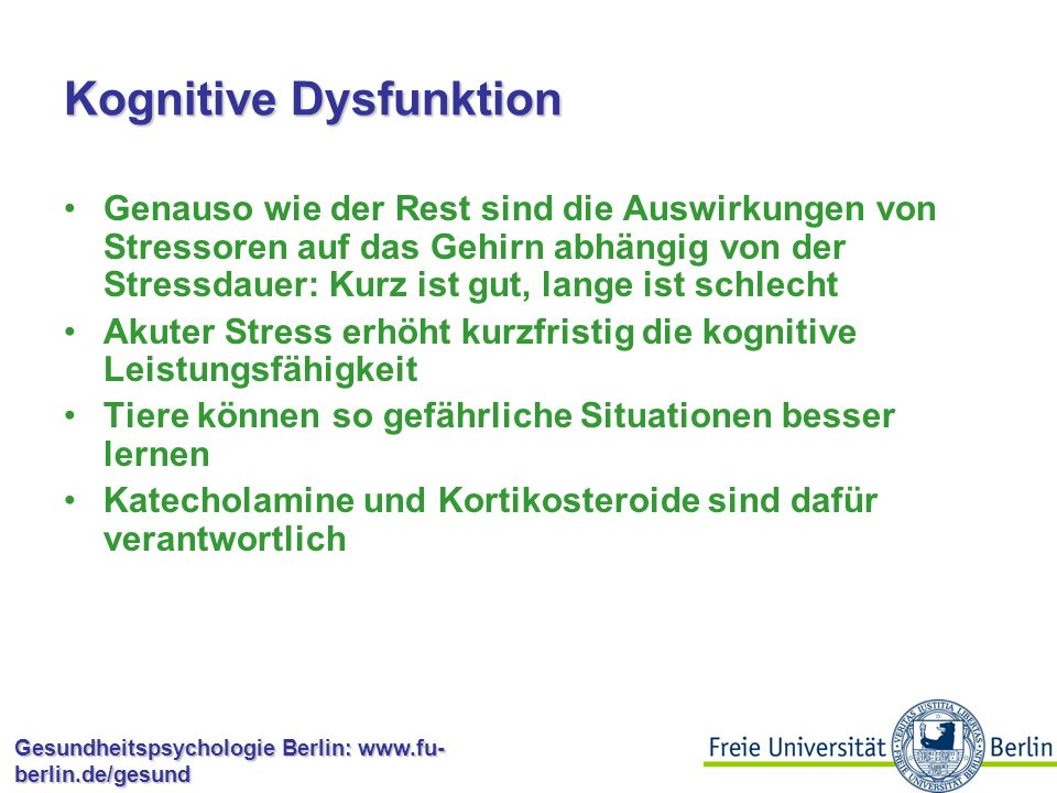 Kognitive Dysfunktion