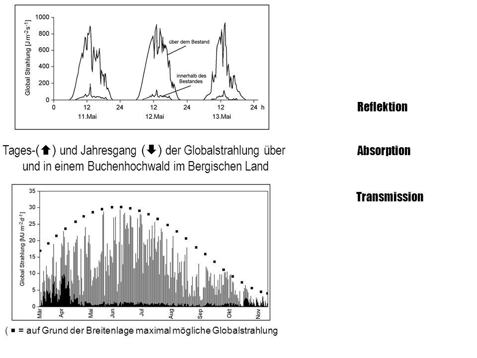 ReflektionTages-() und Jahresgang () der Globalstrahlung über und in einem Buchenhochwald im Bergischen Land.